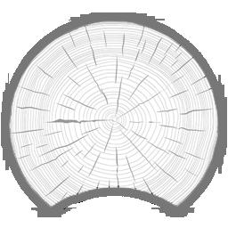 Сруб бани из оцилиндрованного бревна 200мм